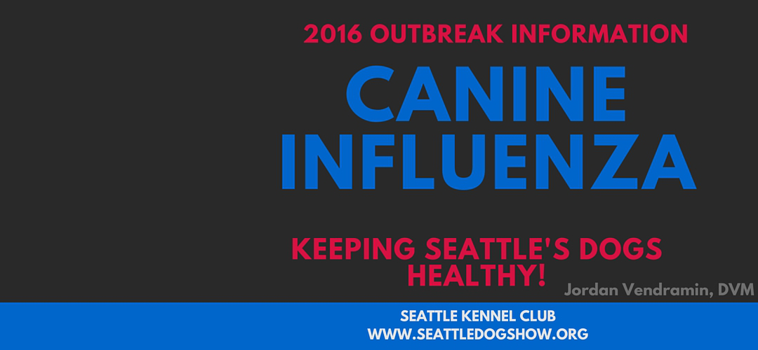 Canine Influenza-teaser