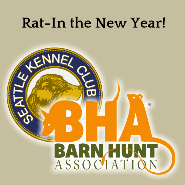 rat-in-the-new-year-trial-entry